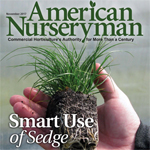The Right Time for Sedges