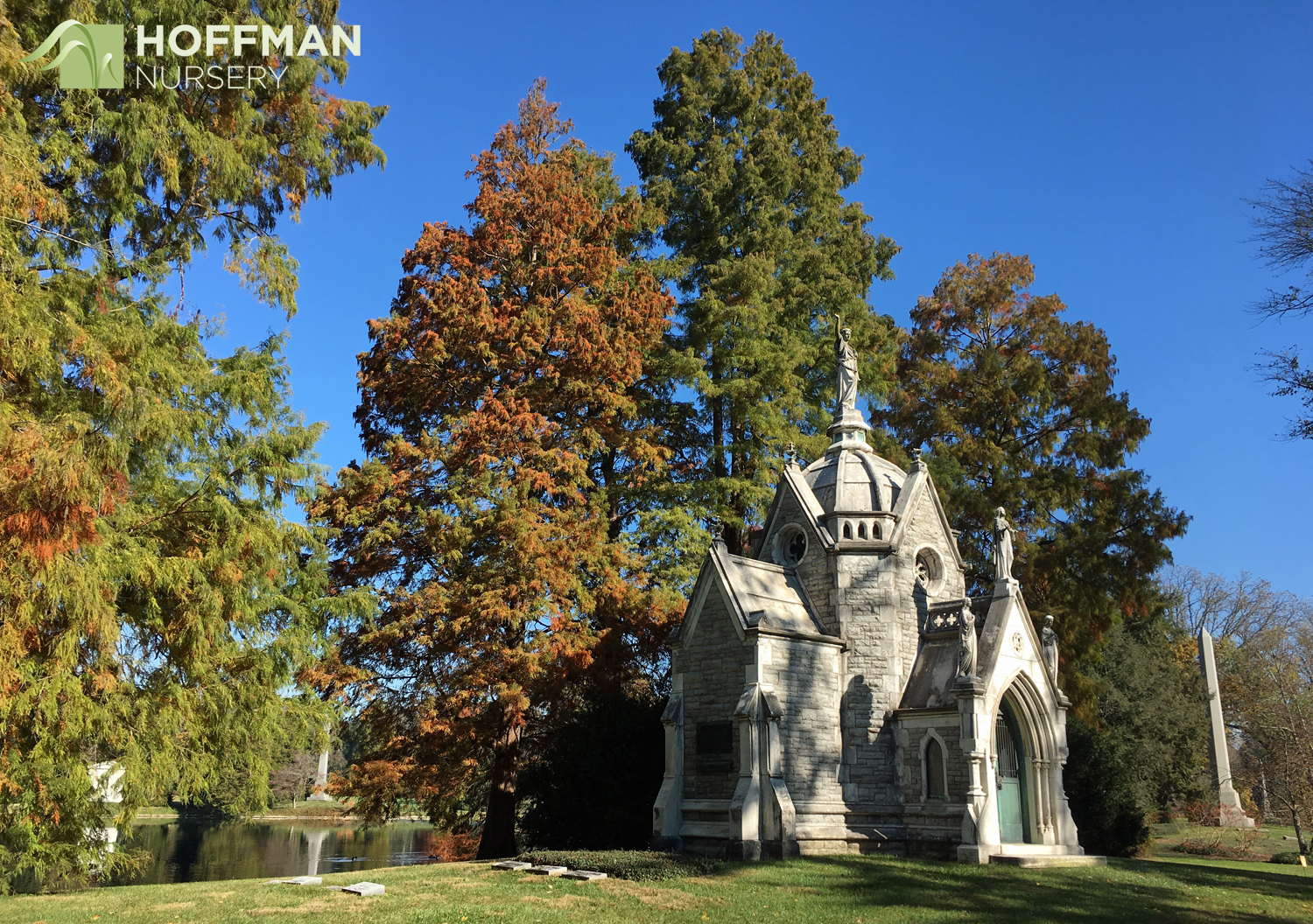 Spring Grove Cemetery & Arboretum has an extensive collection of aged trees and unusual specimens. Its beautiful memorial structures frame the landscape and highlight the beautiful fall colors.