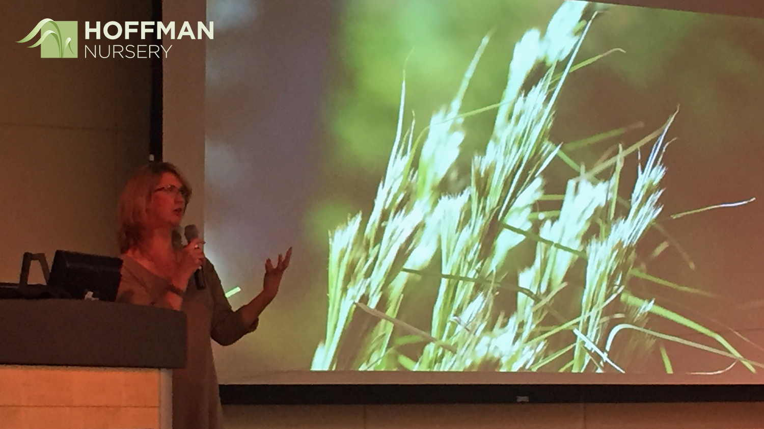 Our Marketing Director Shannon Currey talked about native grasses and sedges, focusing on the important role they play in building today's landscapes.