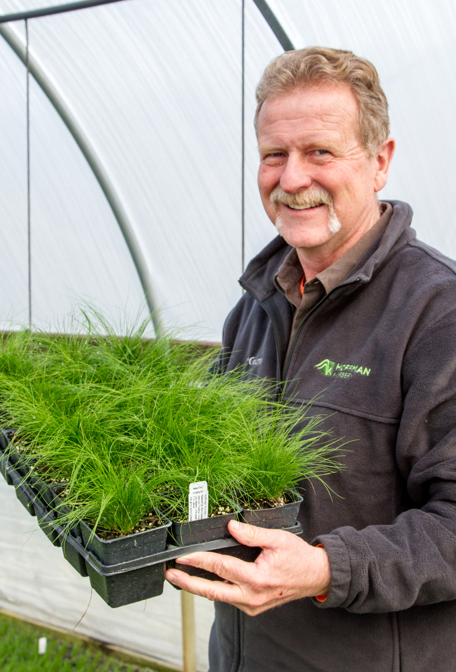Reasons to choose Hoffman Nursery for grass liners