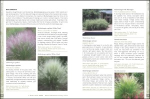 HN Catalog Plant Descriptions