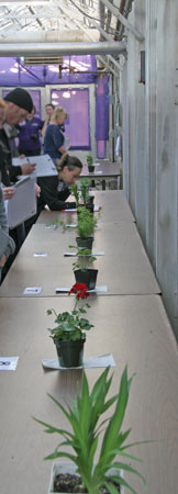Students take their turn with each plant