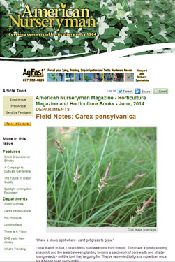 American Nurseryman - Carex pensylvanica