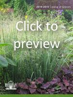 2014-2015 Catalog of Grasses