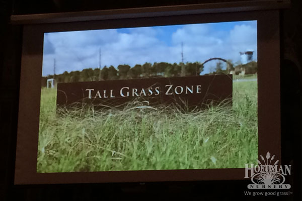 Tall Grass Zone