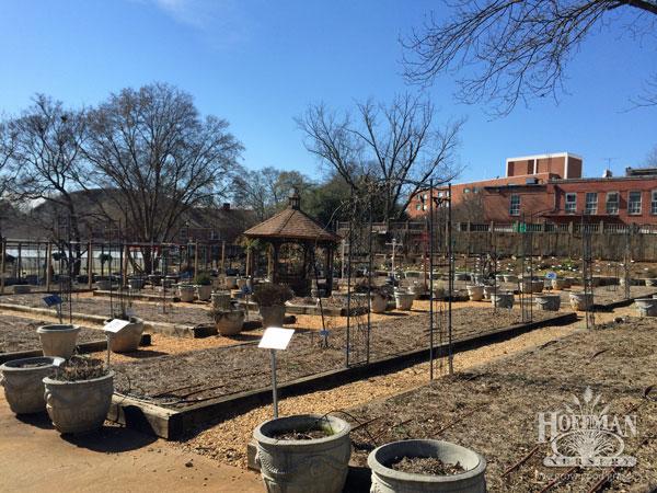 UGA Trial Gardens