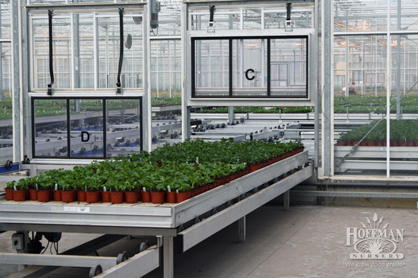 Greenhouse automation