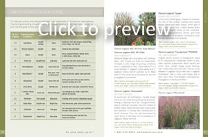Switchgrass Quick Guide