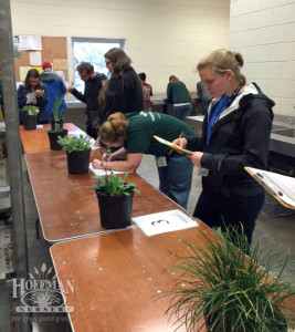 Plant ID competition